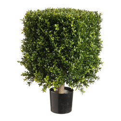 Silk Plants Direct - Silk Plants Direct Square Boxwood Topiary (Pack of 1) - Silk Plants Direct specializes in manufacturing, design and supply of the most life-like, premium quality artificial plants, trees, flowers, arrangements, topiaries and containers for home, office and commercial use. Our Square Boxwood Topiary includes the following: