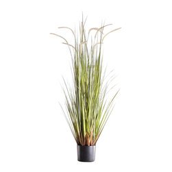 "Pier Surplus - Artificial 43"" Reed Grass w/ Black Pot #HD222557 - Made from the highest-quality materials, its delicate leaves and cattails will fool the most discerning eye while freeing you from watering and care usually needed by this water-loving species. At 43 in. tall and with its interesting and beautiful textures, you're sure to love this faux plant in your home."