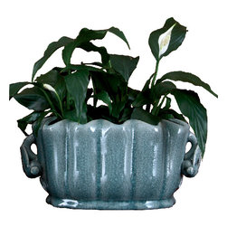 Oriental Danny - Oval scalloped shape porcelain planter - A grand planter for your herb garden, this porcelain basin is glazed in crackled celadon color that gives blue green hue. This piece can be used indoor and outdoor and a perfect size as centerpiece.