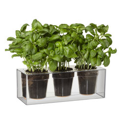 Triple Cube Planter - Bring your home to life with the Triple Cube Tabletop Planter. The planter's clear design allows you to see the water, soil and roots of the plant exposed. This planter also features a water reservoir capable of holding up to 4 weeks of moisture.