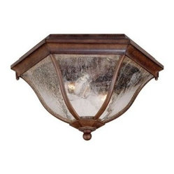 Flushmount Collection Ceiling-Mount 2-Light Outdoor Burled Walnut Light Fixture