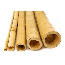 "Bamboo Pole, 1""D x 8' H; 25 Piece Bundle - Bamboo Pole, 1""D x 8' H; 25 Piece Bundle"