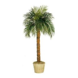 Oriental-Decor - 7' Tall Phoenix Palm Tree - Add a tropical look to any spot in your home or office with this life-like Phoenix Palm Artificial Tree. This tree stands a full 7 feet in height and makes ideal maintenance free decoration. It comes potted in a weighted wicker pot with Spanish moss for a superb look and feel. Place it in your living room, waiting area, bedroom or anywhere. You will be thrilled with the appearance of this tree every time you see it.