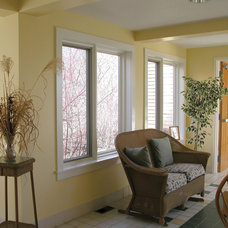 Contemporary Windows by Ply Gem