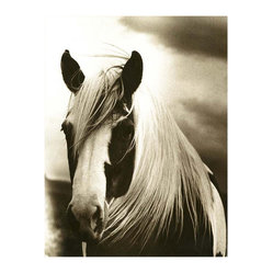 Kathy Kuo Home - Hyden Rustic Lodge Modern Mussed Horse Photo Wall Art - Unframed - Gazing at you with soulful eyes, this windswept horse will shine on your wall. Because this black-and-white photo is both evocative and starkly beautiful, it would hang perfectly in any room in the house. This horse portrait is available framed or unframed.