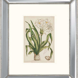 Paragon - Crinum - Framed Art - Each product is custom made upon order so there might be small variations from the picture displayed. No two pieces are exactly alike.