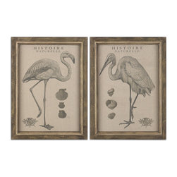 Uttermost - Natural History Framed Art, Set of 2 - Start your own Natural History Museum with a set of these herons. They're printed on an oatmeal linen fabric and framed with multiple shades of brown distressing to add age and interest.