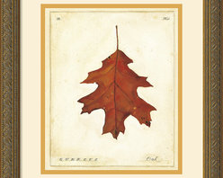 Amanti Art - Oak Leaf Framed Print by Meg Page - Meg Page's leaves are a nostalgic reminder of autumn leaves preserved in wax paper, the spirit of fall captured in each gloriously colored leaf.
