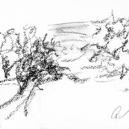 "Ann Rea - Bring home Napa Valley with ""Alluvial Essence"" by Ann Rea, charcoal on paper - ""Tangled vines wrap around the precise order of a planted vineyard."" -Ann Rea"
