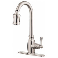Danze D454557SS Opulence Single Handle Pull-Down Kitchen Faucet Stainless Steel