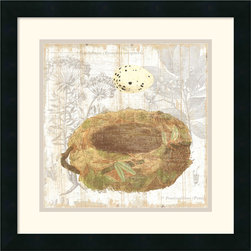 Amanti Art - Botanical Nest I Framed Print by Moira Hershey - The symbol of the bird nest is ripe with meaning, often linked to love, hope and success. Whether you follow these romantic ideas or are just charmed by this artwork by Moira Hershey, this piece can cultivate conversation and add a point of interest to your decor.