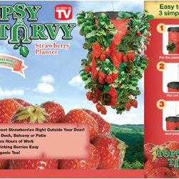 Topsy Turvy® Strawberry Planter - While I'm not a fan of the Topsy Turvy for tomatoes, it works really well for strawberries!