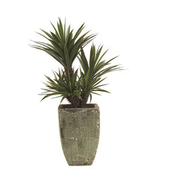 Frontgate - Succulent Green Tree - Expertly handcrafted of polyester silk. Concrete planter has a hand-painted natural-stone finish. Use in a home or office for a natural look. Our faux Succulent Aloe has such authentic texture and detail, others will think its living. Modeled after a real specimen, this 4-foot-high plant has rosettes of lance-like, fleshy leaves with a spiny margin, but requires no care or cleanup.  . . . Imported.