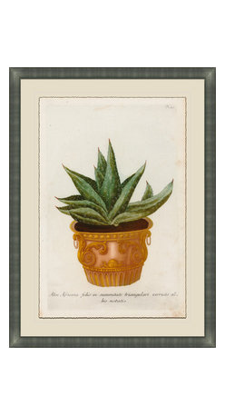 Soicher-Marin - Small Planters F - Giclee Print with a silver contemporary wood frame.  Print mounted on posterboard then floated on an off white mat.  Includes glass, eyes and wire. Made in the USA. Wipe down with damp cloth