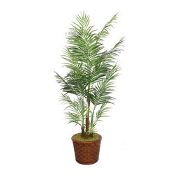 Laura Ashley - 81 in. Tall Areca Palm Tree in 17 in. Fiberstone Planter - Beautiful lifelike Palm tree in a Fiberstone planter. No need to shop for a planter separately - comes complete with decorative planter. Artificial plants let you decorate without concern for water damage, trimming, or soil.. 36 in. L x 36 in. W x 80.8 in. H (19.8 lbs.)