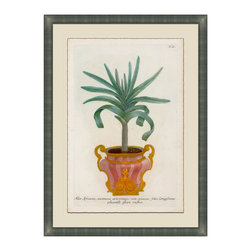 Small Planters - A Framed Giclee - A classic botanical print with antique pot lends an elegant touch to any entry way or living area. For those who love nature but need less maintenance. Adorn your walls with this luscious and exquisitely detailed and framed piece of art, uniquely beautiful and colored in hues of deep greens and gold's. Choose from six and collect your favorites from the collection.