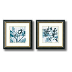 Amanti Art - Steven N. Meyers 'Eucalyptus- set of 2' Framed Art Print 15 x 15-inch Each - Steven Meyers' x-ray images are a collection of negative, positive, and solarized images. By using x-rays instead of light, a secret inner architecture is revealed, allowing us to see textures and details that would otherwise not be seen.