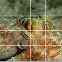 Picture-Tiles, LLC - Sea Life Photo Bathroom Tile Mural 5 - * MURAL SIZE: 24x36 inch tile mural using (24) 6x6 ceramic tiles-satin finish.