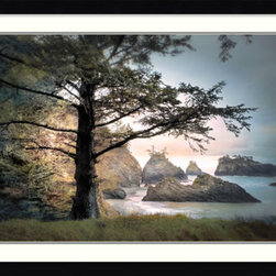 Amanti Art - William Vanscoy 'All Day Dreamer' Framed Art Print 43 x 32-inch - Lose yourself in a shady tree glade overlooking a majestic coast view in this photograph by William Vanscoy. This framed art print makes the perfect complement to any beach lover's decor.