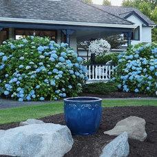Traditional  A blue garden