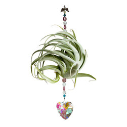 Spirit Pieces - Hannah Heart Tillandsia Air Plant with Crystal Suncatcher Heart - A great addition to any garden, patio or window this Tillandsia Air Plant needs no soil.  Comes with Swarovski Suncatchers and Crystal beading.