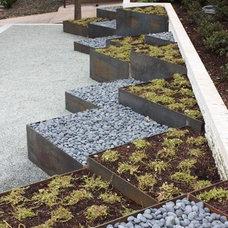 by Studio H Landscape Architecture