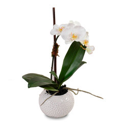 New Growth Designs - Single Stem Orchid in White Pot - White and winsome, this single-stem orchid will bring a fresh, elegant touch to your space. Standing tall in a pretty white pot complete with artificial soil, it's so lively and lovely, no one will ever know it's faux.