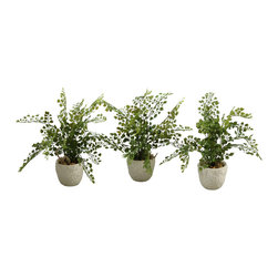 """D&W Silks - Artificial Maiden Hair Fern in Coral Reef Vase, Set of 3 - It's amazing how much adding a plant can change the look of a room or decor, but it can be difficult if your space is not conducive to growing plants, or if you weren't exactly born with a """"green thumb."""" Invite the beauty of nature into your home without all the upkeep with this maintenance-free, allergy-free arrangement of artificial maiden hair fern in a coral reef vase. This is not a living plant."""
