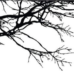 Tree Top Branches Wall Decal