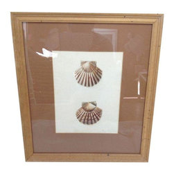 Pre-owned Hand Colored Shell Artwork - This signed and hand colored drawing of scallop shells sits nicely in a wood frame and would look lovely arranged on the wall among other pieces of sea-oriented art.