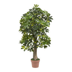 Nearly Natural - 4' Schefflera Silk Tree (Real Touch) - Think green, no matter what the weather is outside. That's how you'll feel when you gaze upon this stunning Schefflera tree. With a stout trunk that projects an aura of strength, this tree makes the perfect piece to adorn an entranceway. The trunk gives way to a burst of lush green and yellow leaves that feel every bit as real as they look, with nary a drop of water!