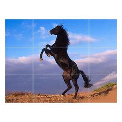 Picture-Tiles, LLC - Horse Picture Kitchen Bathroom Ceramic Tile Mural  12.75 x 17 - * Horse Picture Kitchen Bathroom Ceramic Tile Mural 1623