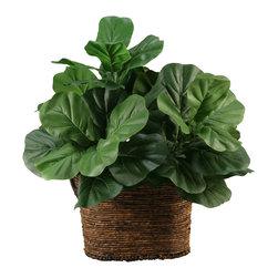 D&W Silks - D&W Silks Fiddle Leaf Fig In Norwick Basket Dark Brown Oval With Handles - Fiddle leaf fig in norwick basket dark brown oval with handles