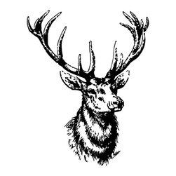 "StickersForLife - Wall Vinyl Sticker Decal Animal Deer Buck Elk Cute Horns z001, Dark Blue, 22x35"" - Thank you for visiting our store!!!"