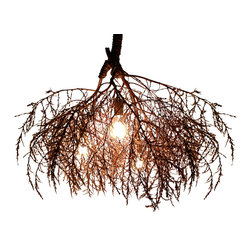 Same Tree - The Native Chandelier Classic - This is how nature lights up.