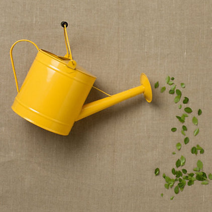 Contemporary Watering Cans by Terrain