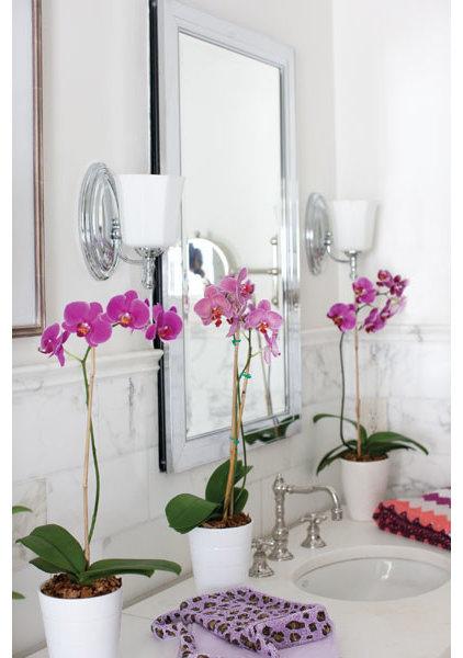Traditional Bathroom Lighting And Vanity Lighting by Lewis Lighting & Home