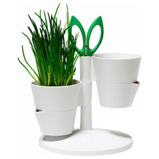 Modern Indoor Pots And Planters by Made in Design