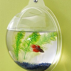 Danya B - Wall Mount Fishbowl - Ideal for betta fish and goldfish. Open top. Easy to dismount for cleaning. Made from acrylic. 11 in. L x 4.5 in. W x 11 in. H (1.2 lbs.)