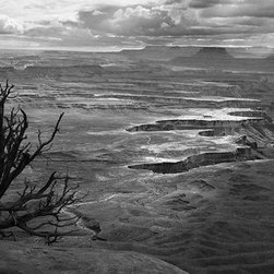 "Canyonlands National Park - Large-Scale, Limited Edition Photography - A stunning landscape, this 48"" X 18"" outdoor landscape from Canyonlands National Park is magnificent. The sun lights up the rim of the canyon perfectly, and is one of Cody Brother's most dramatic photographs."