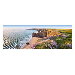 Nordic Coast Wall Mural - This panoramic wall mural depicts a stunning scenic from the Nordic Coast. A rocky cliff topped with wildflowers and sea grass stretches out into the distance above the sunlit seashore. A slice of Scandinavian glory is a fresh perspective for any space.