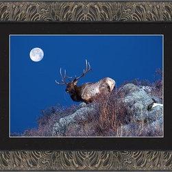 Wild Moon - Wild Moon