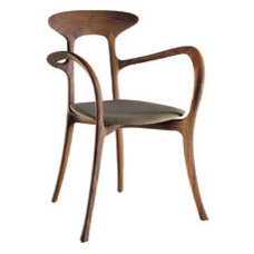 Modern Armchairs And Accent Chairs by ddc nyc