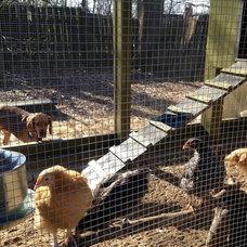 Farmhouse  Urban Coop Tour Atlanta