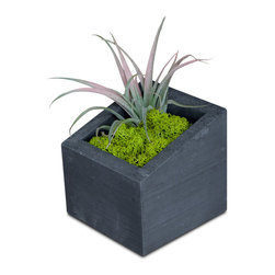 Handmade Sliced Open Concrete Planter in Black - Your windowsill needs a little love and we think this handmade concrete planter is perfect for the job. The irregular and sharp angles add a bit of playfulness, while maintaining its chic sense of style. Displayed anywhere indoors or on your outdoor patio, this planter is sure to garner positive attention.