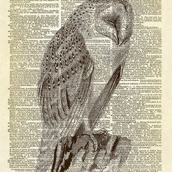 """Altered Artichoke - Screech Owl Art Dictionary Print, Sepia - This print features an antique illustration of a screech owl from the book """"Birds"""" by A.H. Evans published in 1900. Lovely!"""