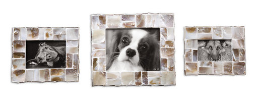 Uttermost - Capiz Photo Frames Set of 3 - Have you always wanted to create a scene but have been too afraid? Well, now's your chance. These three different sized, dramatic capiz shell frames allow you to create the perfect scene, showing off proudly what speaks to you.