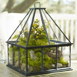 Tabletop Greenhouse - Make an herb garden the centerpiece with this decor-ready tabletop greenhouse.