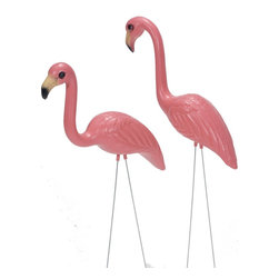 Flamingo Pink - Pink Inc Flamingo, Pink, 2 Count (3 Pack) (363SP) - Pink Inc 363SP Flamingo, Pink, 2 Count (3 Pack)