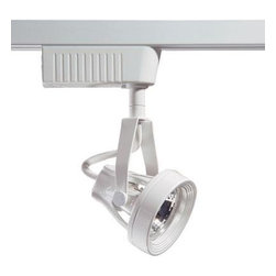 Designers Choice Collection - Designers Choice Collection 6601 Series Low Voltage MR16 White Track Lighting Fi - Shop for Lighting & Fans at The Home Depot. The distinctive form of the Designers Choice Collection 6601 Series Low-Voltage Track Lighting head accents your decor with a clean White finish while providing 50 watts of directional Halogen light. A variety of available Track lengths enable custom Lighting design. Easily snaps into track at any point with a quarter-turn.
